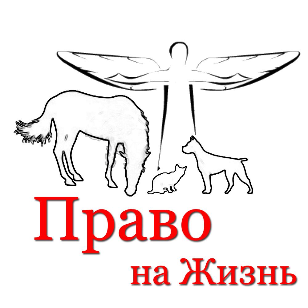 Картинки по запросу права животных картинки